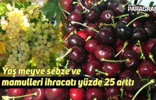 Yaş meyve sebze ve mamulleri ihracatı yüzde 25...