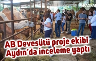 AB Devesütü proje ekibi Aydın'da inceleme yaptı