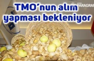 Elde kalan kuru incir için TMO'nun alım yapması...
