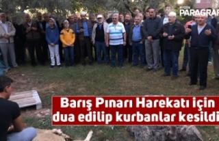 Barış Pınarı Harekatı için dua edilip kurbanlar...