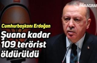 """Cumhurbaşkanı Erdoğan: """"Şuana kadar 109 terörist..."""