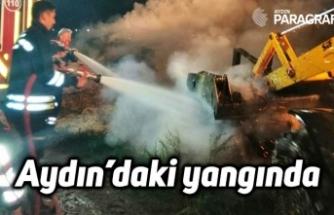 Aydın'daki yangında