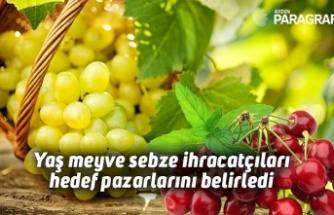 Yaş meyve sebze ihracatçıları hedef pazarlarını belirledi