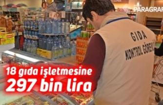 18 gıda işletmesine 297 bin lira