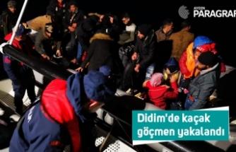 Didim'de kaçak göçmen yakalandı