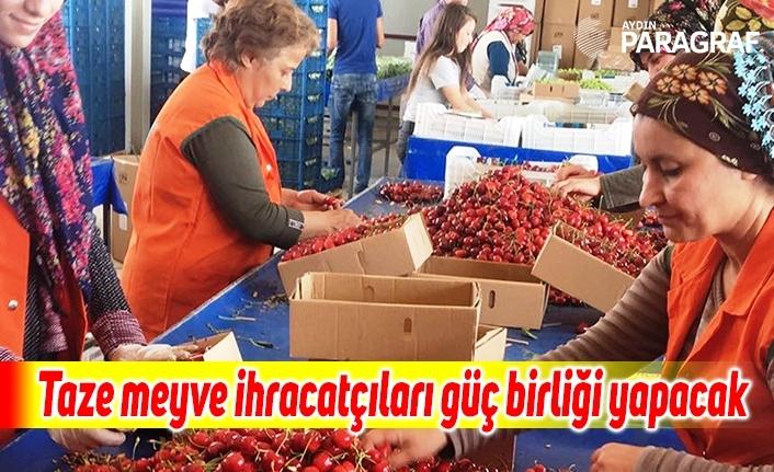 Taze meyve ihracatçıları güç birliği yapacak