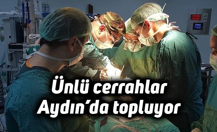 Ünlü cerrahlar Aydın'da toplanıyor